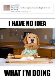 Won't Stop Baking
